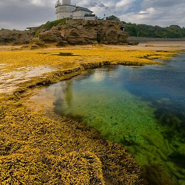 Point Lonsdale by Davo1812