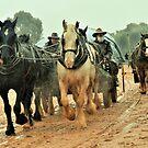 Wagon in the Rain no 3  by julie anne  grattan