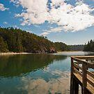 Deception State Pass Park by Jaime Pharr