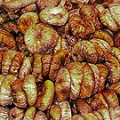 Dried Figs On Display by Dorothy Berry-Lound
