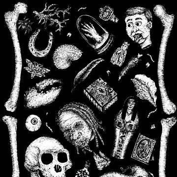 Cabinet of Curiosities by alowerclass
