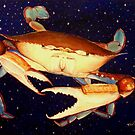 Crab in Space by Scott Plaster