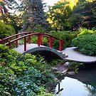 Kubota Garden by Jaime Pharr
