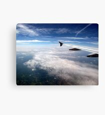 Angel's Wing Canvas Print