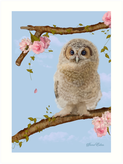 Fledgling Owl in the Cherry Blossom by JaneEden