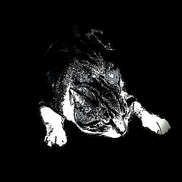 My cat by Hristova