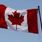 "Happy Birthday ""Canada"" by Larry Trupp"