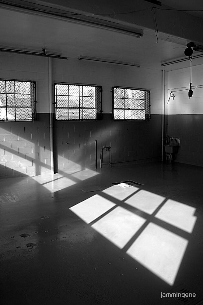 Window of light by jammingene