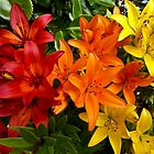SUMMER RED, ORANGE AND YELLOW LILIES by Elaine Bawden