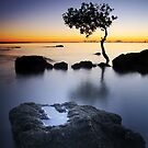 Serenity by Ben Ryan