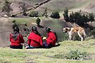 Dog watching three school girls eat lunch, Ecuador rural hillside by Kendall Anderson