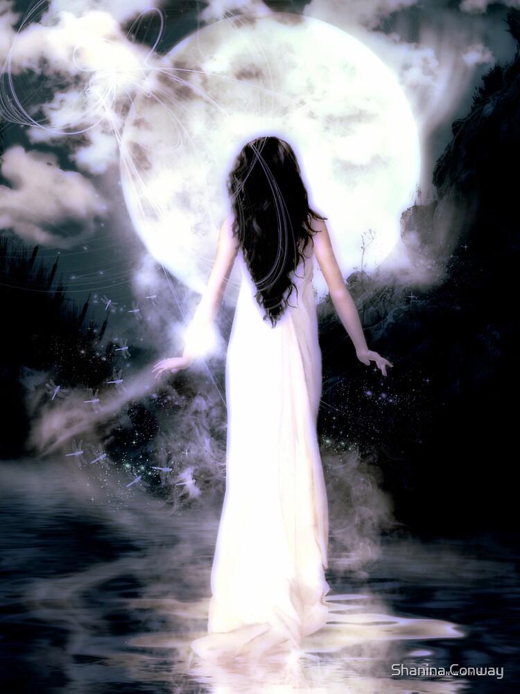 Moonlight Sonata by Shanina Conway