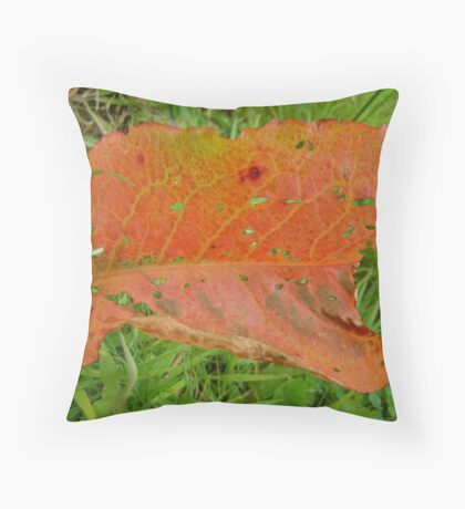 exception Throw Pillow