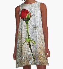 CLIMBING ROSE A-Line Dress