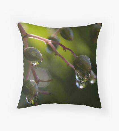 Elder dewdrops 2 Throw Pillow