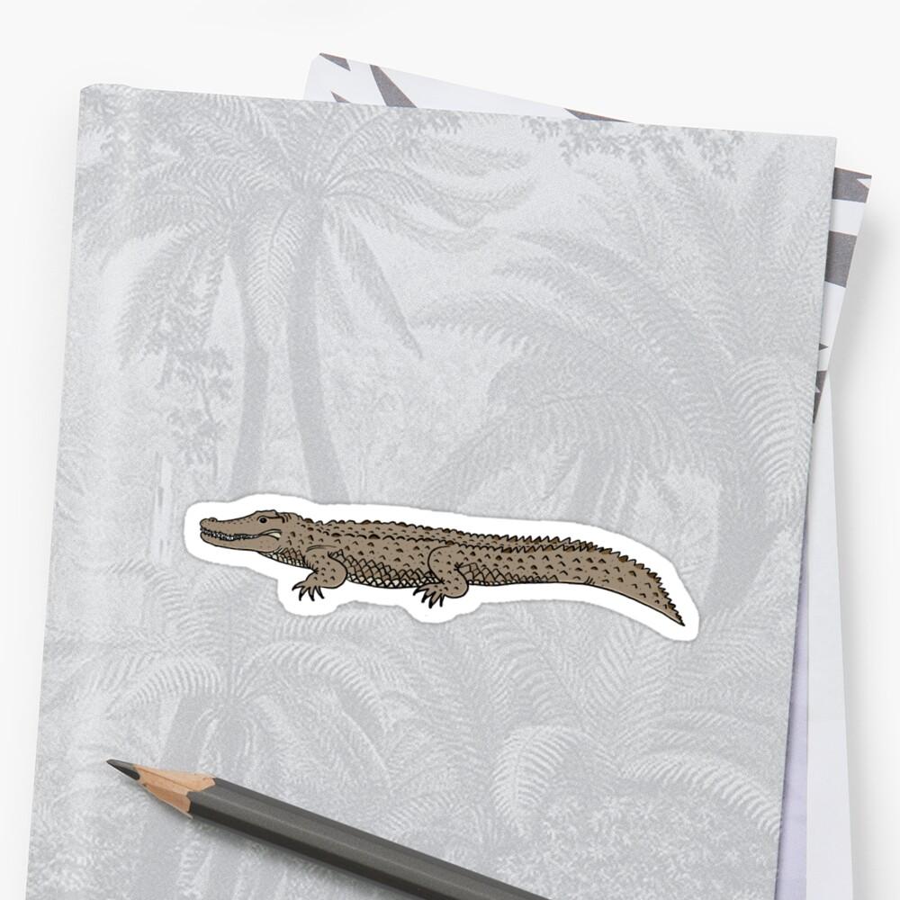 Estuarine Crocodile by Rob Price