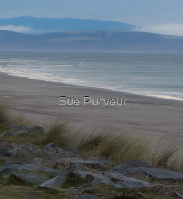 Solo by Sue Purveur