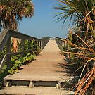 Boardwalk to the Beach by Virginia N. Fred