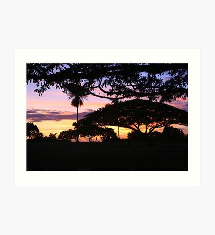 A walk at sunset Art Print