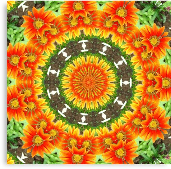 Kaleidoscopic Orange Garden Gazanias by taiche