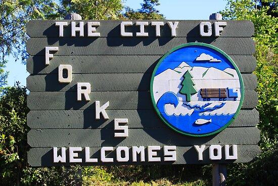 Forks, Washington by BlueFeather