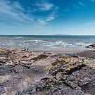 Malahide Beach by Alessio Michelini