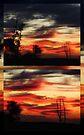 """Near & Far"" by debsphotos"