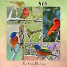2018 - The Year of the Bird by Bonnie T.  Barry