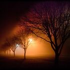 River Road Emu Plains at Night  by Manfred Belau