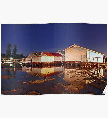 Low Tide At Mosman Bay Boatsheds  Poster