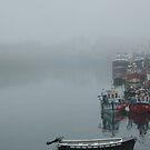 Foggy by pablotguerrero
