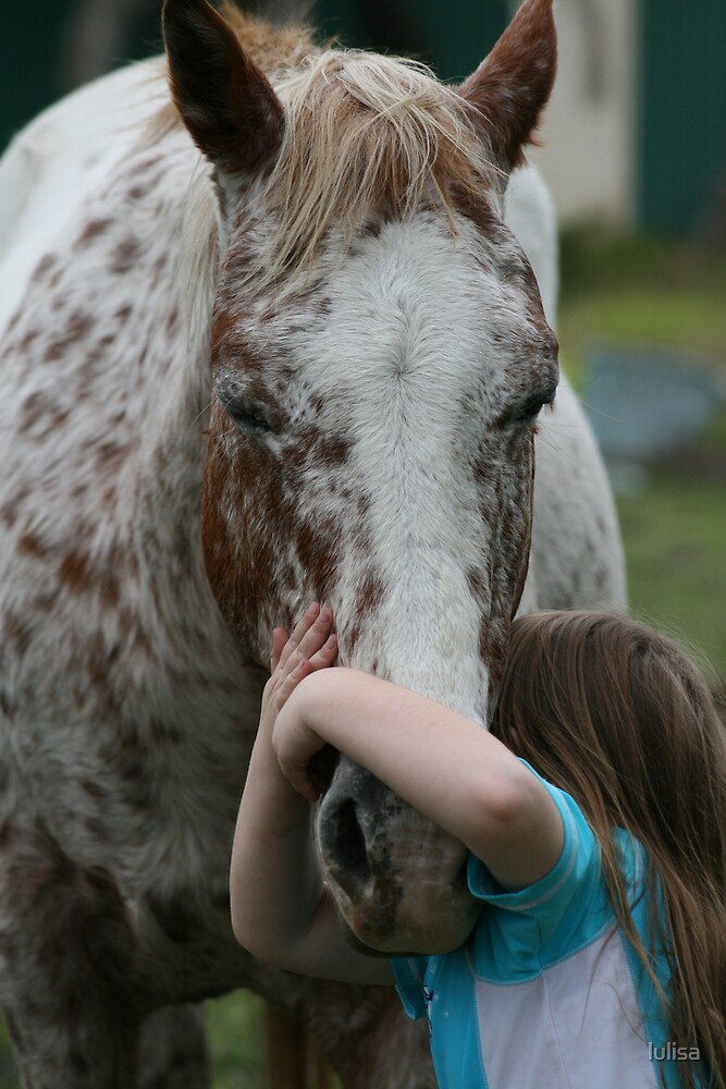 its every girls dream to own a horse by lulisa