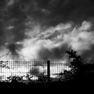 Savage sunset - nature in black and white by Agnes McGuinness