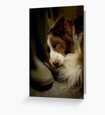 Smelly Welly Greeting Card