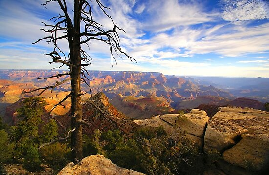"""""""The Grand View"""" by JohnDSmith"""