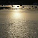 Noumea sunrise by PhotosByG