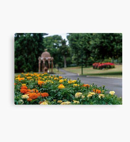City Park, Launceston. Canvas Print