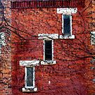 Cascading Windows by Brian Gaynor