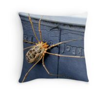 Hitch Hiking. Throw Pillow