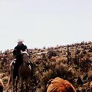 Cowboy by MRPhotography