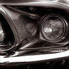 Mustang by Dave Warren