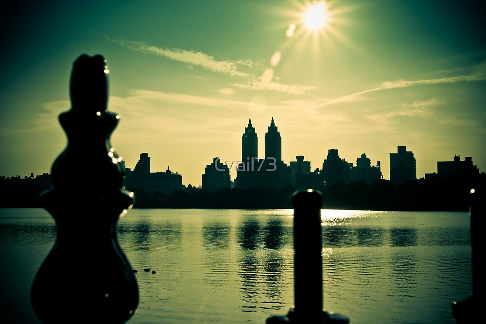 View from Central Park by Cvail73