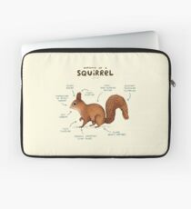 Anatomy of a Squirrel Laptop Sleeve