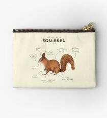Anatomy of a Squirrel Studio Pouch