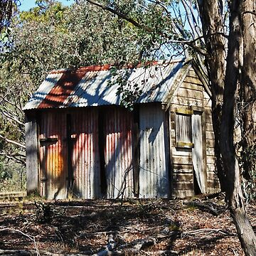 Hut of Timber & Corrugated Iron - Tuena by blossom