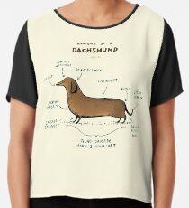 Anatomy of a Dachshund Chiffon Top