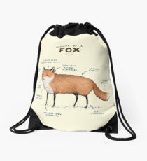 Anatomy of a Fox Drawstring Bag