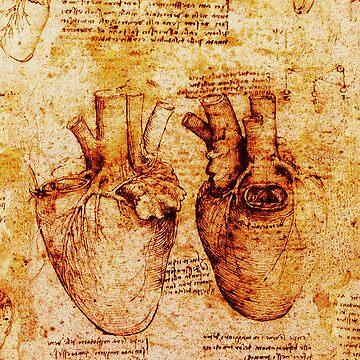 Heart And Its Blood Vessels. Leonardo Da Vinci,Anatomic Study 2,Brown by BulganLumini