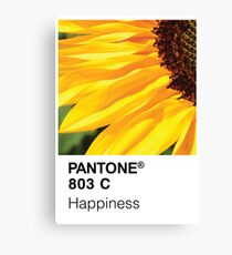 Color Swatch - Happiness Canvas Print