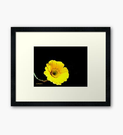 It's All About Me Framed Print